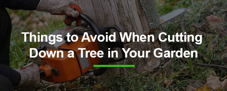 Things to avoid when cutting down a tree in your garden