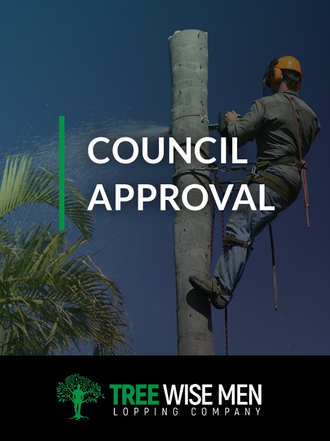 Council Approval for Tree Lopping